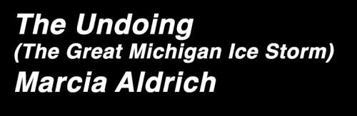 The Undoing by Marcia Aldrich